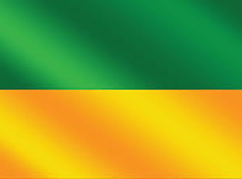 Bandera de Golfito